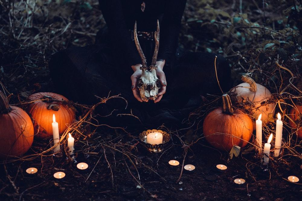 Four Haunting Halloween Reads