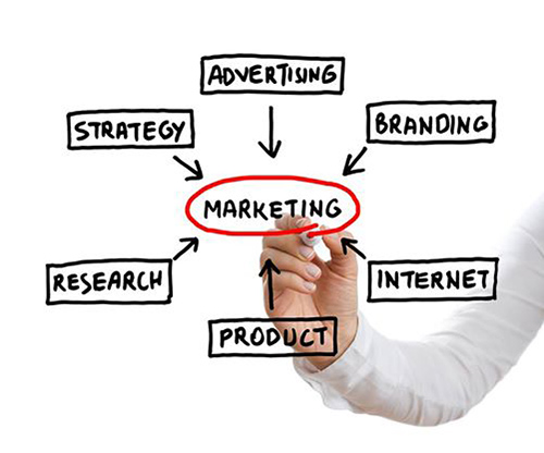 How The Marketing Department Can Help You!