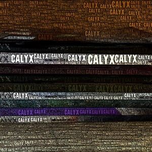 Advice from CALYX Authors to Inspire You to Be Your Most Awesome Self