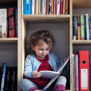 On Those Who Cannot Read: Accommodating Children with Special Needs