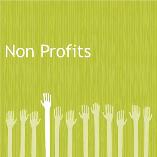 Doing It Differently: The Pros & Pitfalls of Operating a Nonprofit