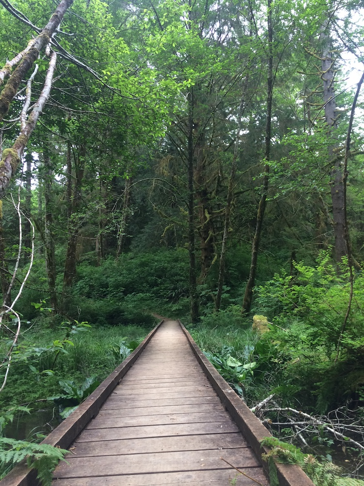 50 Hikes in the Tillamook and Clatsop State Forest Preparedness Guide